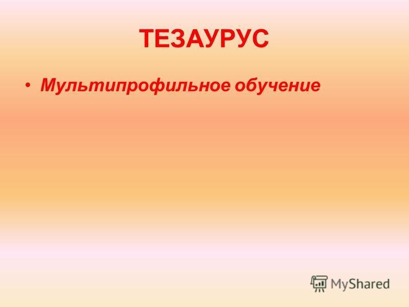 ТЕЗАУРУС Мультипрофильное обучение