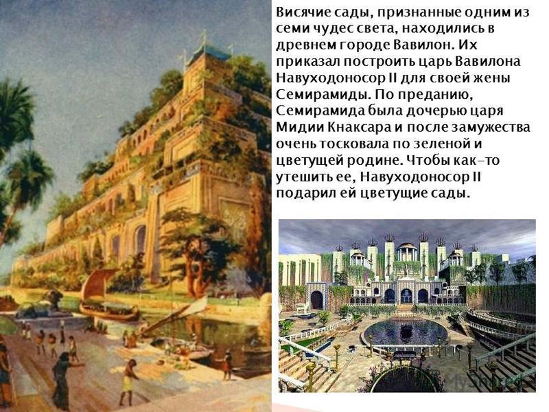 Висячие сады, признанные одним из семи чудес света, находились в древнем городе Вавилон. Их приказал построить царь Вавилона Навуходоносор II для своей жены Семирамиды. По преданию, Семирамида была дочерью царя Мидии Кнаксара и после замужества очень