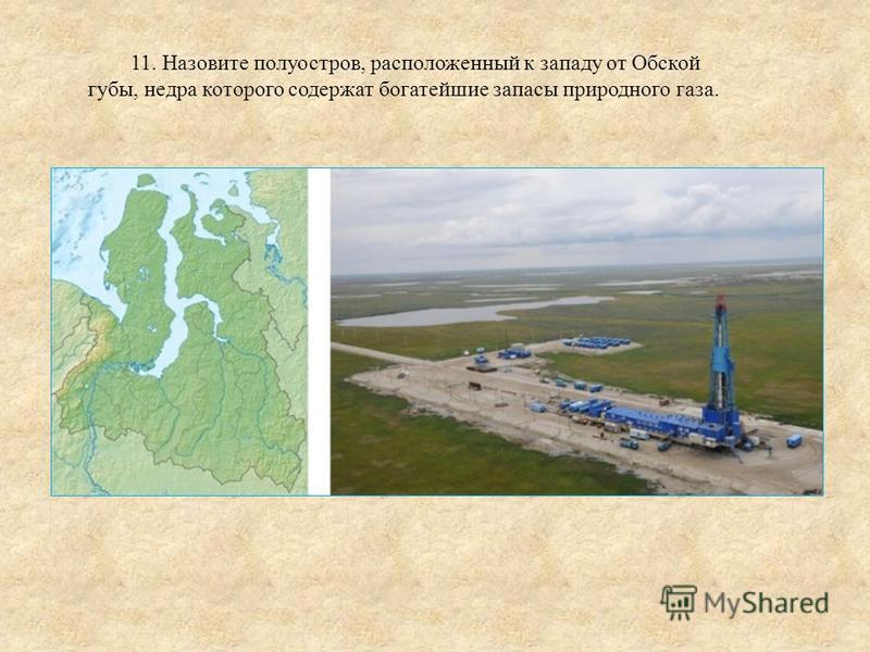 11. Назовите полуостров, расположенный к западу от Обской губы, недра которого содержат богатейшие запасы природного газа.
