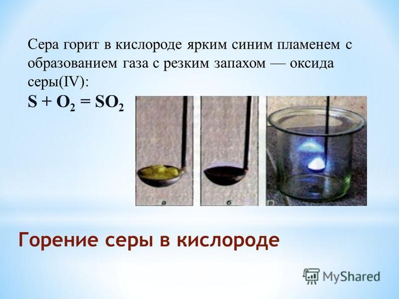 Горение серы в кислороде Сера горит в кислороде ярким синим пламенем с образованием газа с резким запахом оксида серы(IV): S + O 2 = SO 2