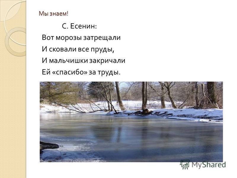 Мы знаем ! С. Есенин : Вот морозы затрещали И сковали все пруды, И мальчишки закричали Ей « спасибо » за труды.