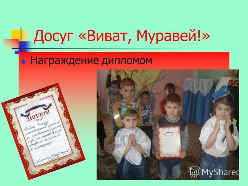 Досуг «Виват, Муравей!» Награждение дипломом