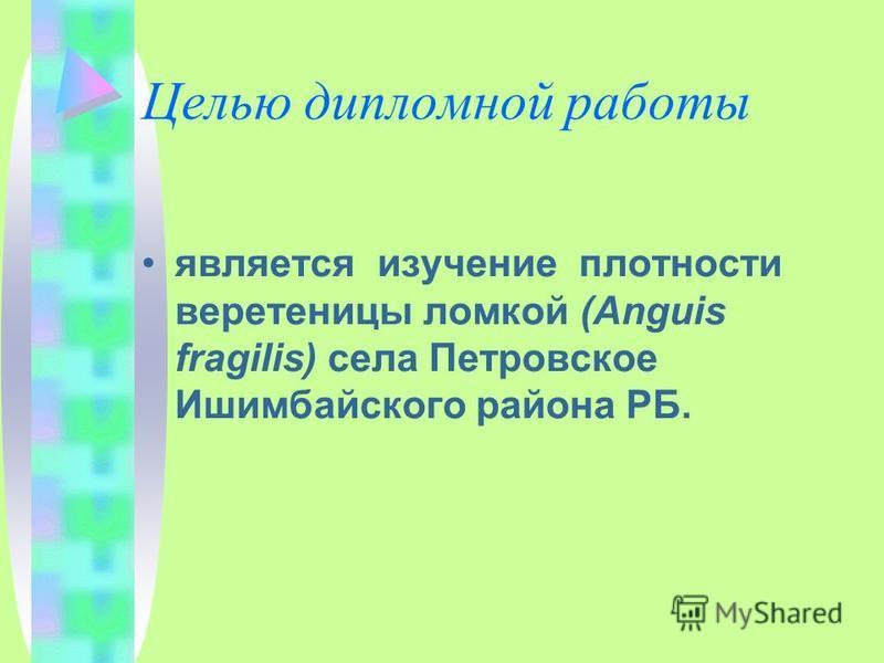 Целью дипломной работы является изучение плотности веретеницы ломкой (Anguis fragilis) села Петровское Ишимбайского района РБ.
