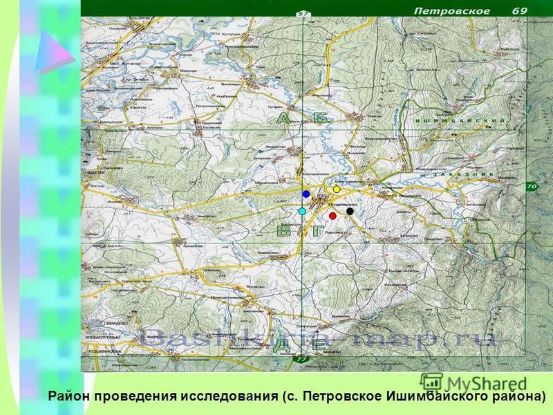 Район проведения исследования (с. Петровское Ишимбайского района)
