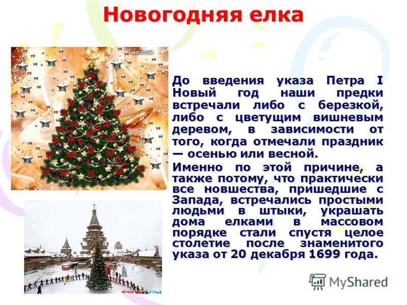 Новогодняя елка До введения указа Петра I Новый год наши предки встречали либо с березкой, либо с цветущим вишневым деревом, в зависимости от того, когда отмечали праздник осенью или весной. Именно по этой причине, а также потому, что практически все