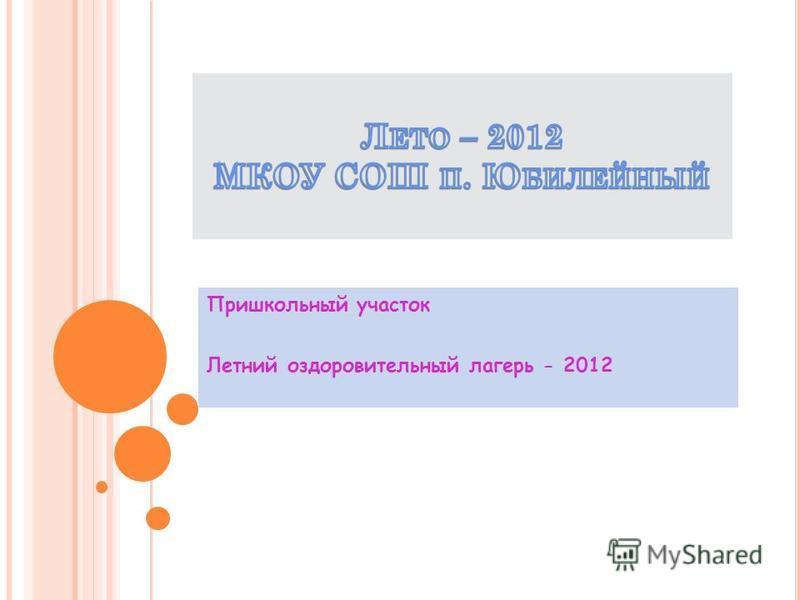 Пришкольный участок Летний оздоровительный лагерь - 2012