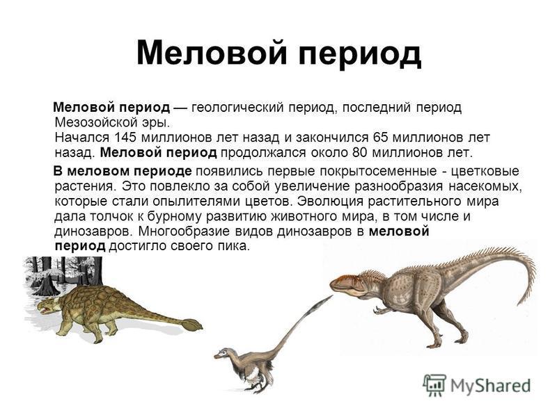 Меловой период Меловой период геологический период, последний период Мезозойской эры. Начался 145 миллионов лет назад и закончился 65 миллионов лет назад. Меловой период продолжался около 80 миллионов лет. В меловом периоде появились первые покрытосе