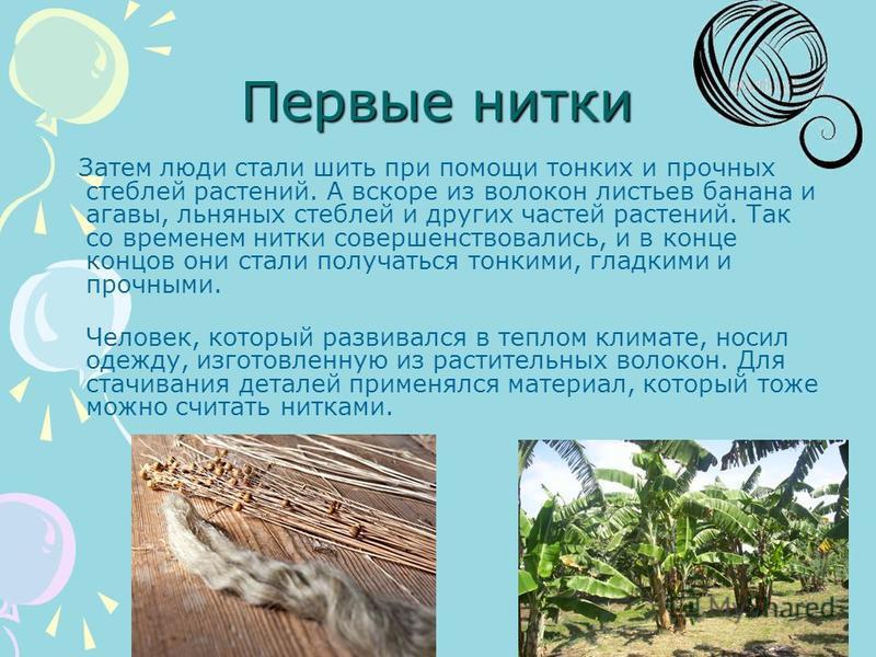 Первые нитки Затем люди стали шить при помощи тонких и прочных стеблей растений. А вскоре из волокон листьев банана и агавы, льняных стеблей и других частей растений. Так со временем нитки совершенствовались, и в конце концов они стали получаться тон