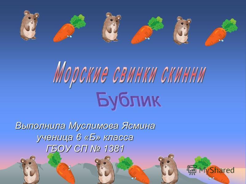 Выполнила Муслимова Ясмина ученица 6 «Б» класса ГБОУ СП 1381