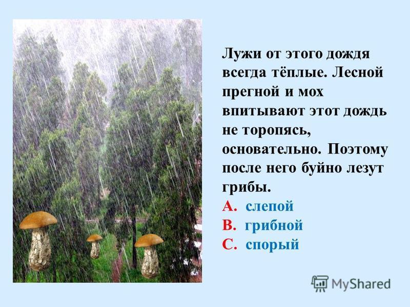 Особенно хорош этот дождь на реке. Этот дождь льётся отвесно, сильно. Он всегда приближается с набегающим шумом. При этом по всей реке стоит стеклянный звон. По высоте этого звона догадываешься, набирает ли дождь силу или стихает. А. спорый В. грибно