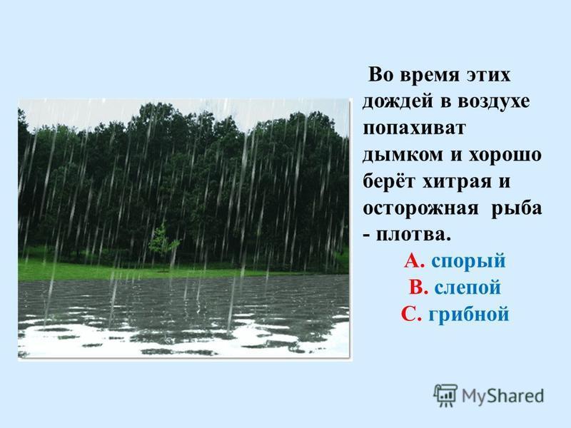 Название этого дождя означает «быстрый», «скорый». Особенно хорош этот дождь на реке. А. слепой В. спорый С. грибной