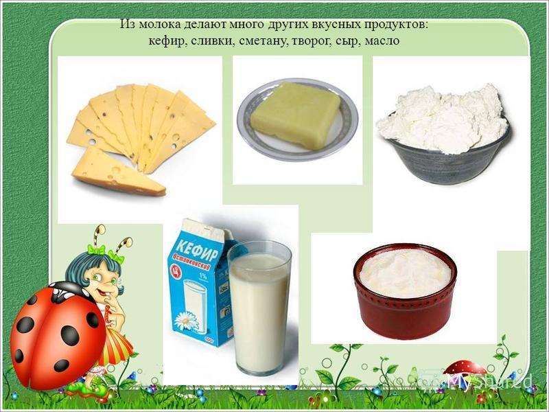 Из молока делают много других вкусных продуктов: кефир, сливки, сметану, творог, сыр, масло