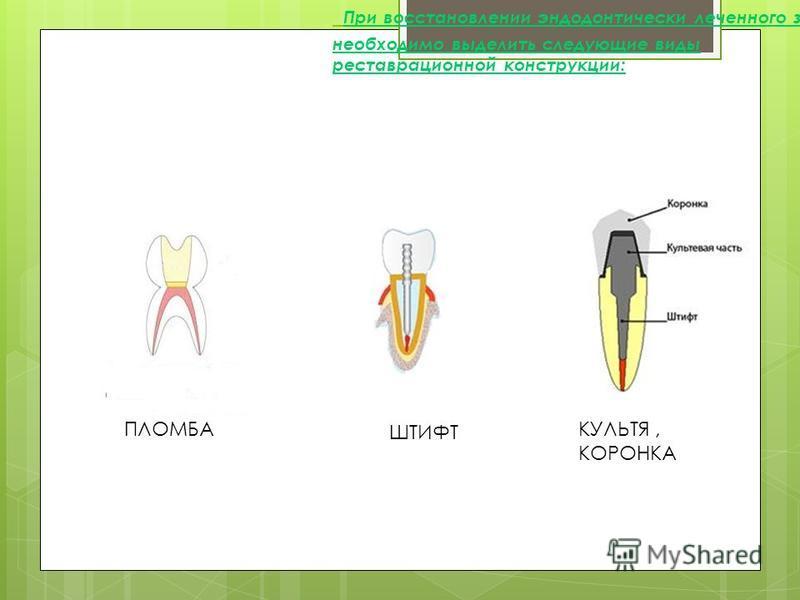 При восстановлении эндодонтически леченного зуба необходимо выделить следующие виды реставрационной конструкции: ПЛОМБА ШТИФТ КУЛЬТЯ, КОРОНКА