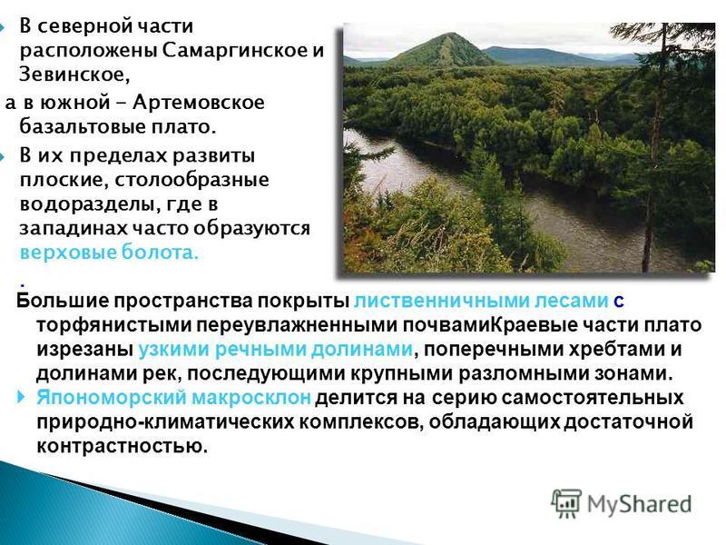 В северной части расположены Самаргинское и Зевинское, а в южной - Артемовское базальтовые плато. В их пределах развиты плоские, столообразные водоразделы, где в западинах часто образуются верховые болота.. Большие пространства покрыты лиственничными