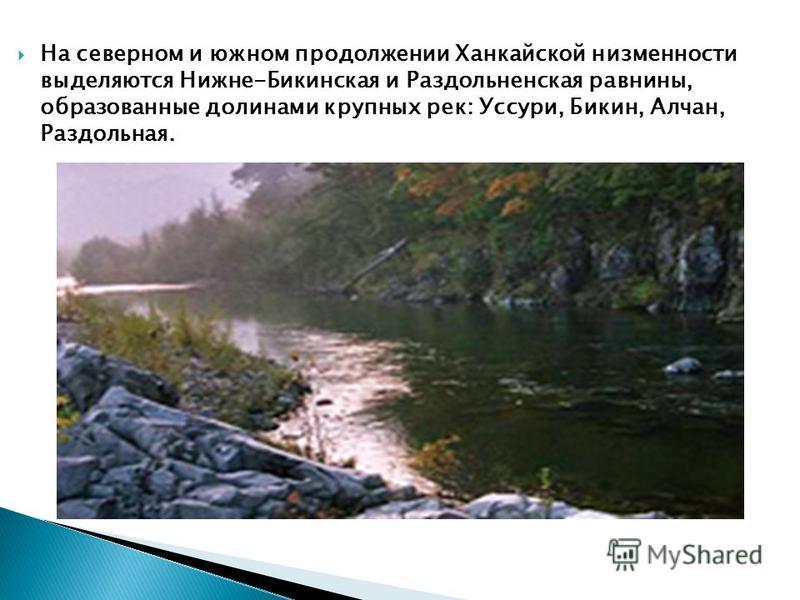 На северном и южном продолжении Ханкайской низменности выделяются Нижне-Бикинская и Раздольненская равнины, образованные долинами крупных рек: Уссури, Бикин, Алчан, Раздольная.