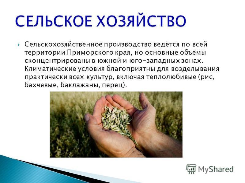 Сельскохозяйственное производство ведётся по всей территории Приморского края, но основные объёмы сконцентрированы в южной и юго-западных зонах. Климатические условия благоприятны для возделывания практически всех культур, включая теплолюбивые (рис,