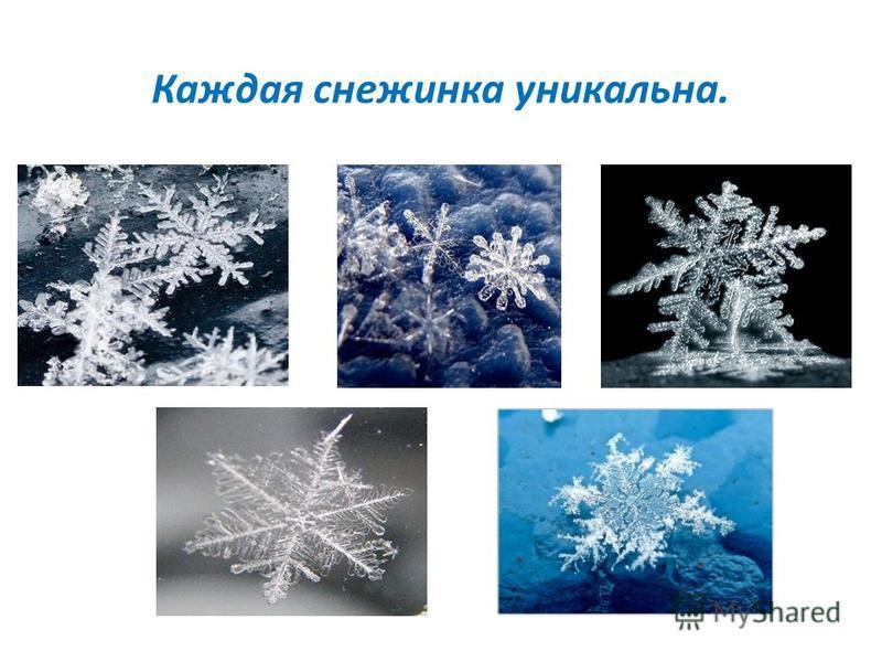Каждая снежинка уникальна.