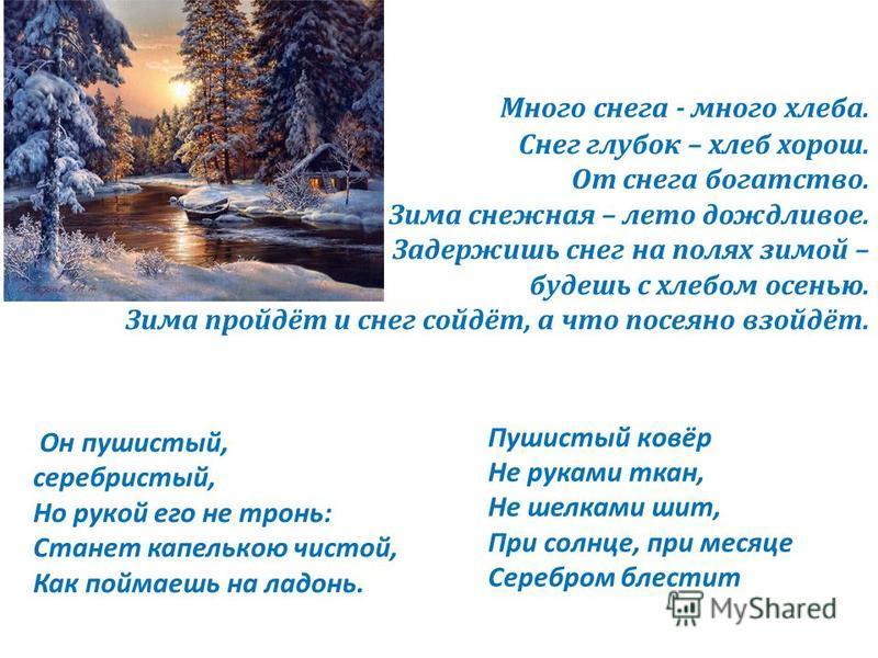 Много снега - много хлеба. Снег глубок – хлеб хорош. От снега богатство. Зима снежная – лето дождливое. Задержишь снег на полях зимой – будешь с хлебом осенью. Зима пройдёт и снег сойдёт, а что посеяно взойдёт. Пушистый ковёр Не руками ткан, Не шелка