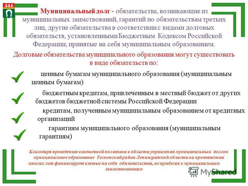 Муниципальный долг - обязательства, возникающие из муниципальных заимствований, гарантий по обязательствам третьих лиц, другие обязательства в соответствии с видами долговых обязательств, установленными Бюджетным Кодексом Российской Федерации, принят