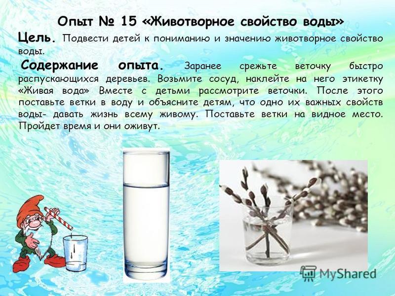 Опыт 15 «Животворное свойство воды» Цель. Подвести детей к пониманию и значению животворное свойство воды. Содержание опыта. Заранее срежьте веточку быстро распускающихся деревьев. Возьмите сосуд, наклейте на него этикетку «Живая вода» Вместе с детьм