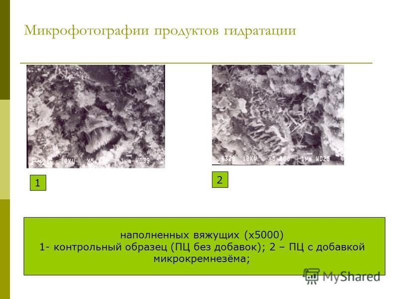Микрофотографии продуктов гидратации 1 2 наполненных вяжущих (х 5000) 1- контрольный образец (ПЦ без добавок); 2 – ПЦ с добавкой микрокремнезёма;