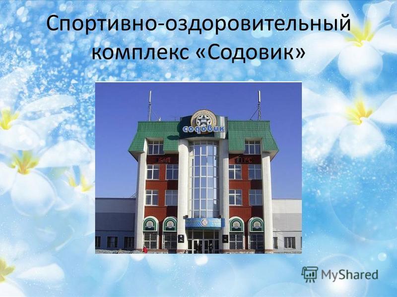 Спортивно-оздоровительный комплекс «Содовик»
