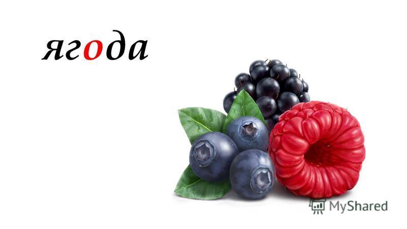 ягода