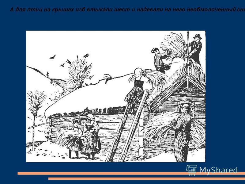 А для птиц на крышах изб втыкали шест и надевали на него необмолоченный сноп. Птицы слетались и клевали зерна.