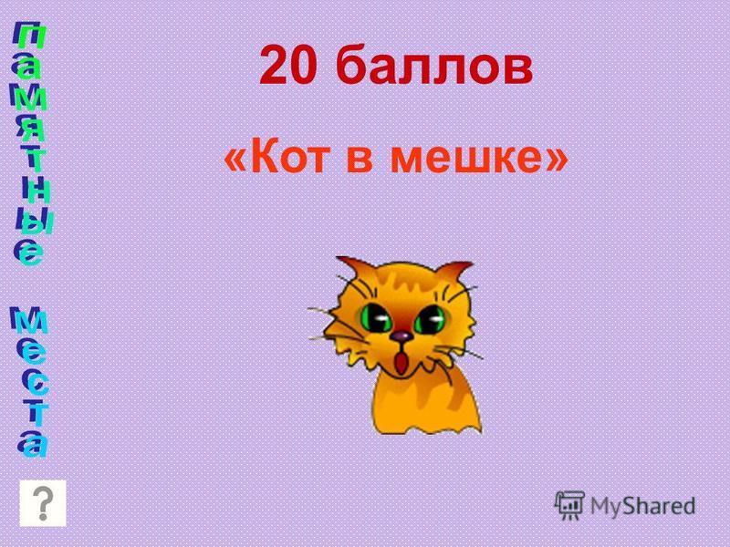 20 баллов «Кот в мешке»