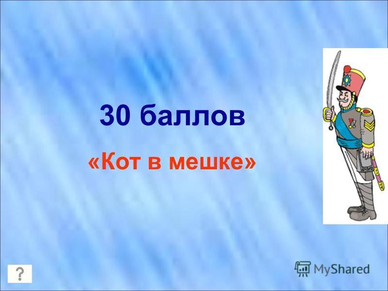 30 баллов «Кот в мешке»