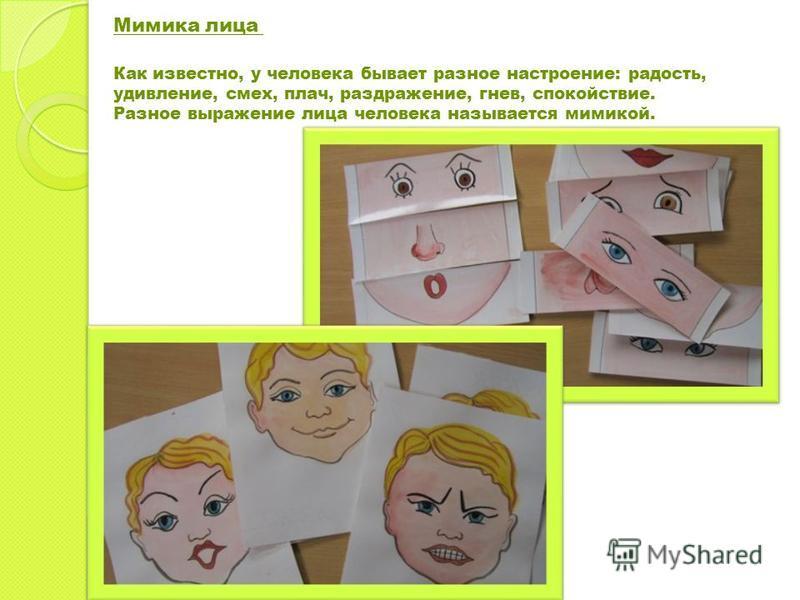 Мимика лица Как известно, у человека бывает разное настроение: радость, удивление, смех, плач, раздражение, гнев, спокойствие. Разное выражение лица человека называется мимикой.