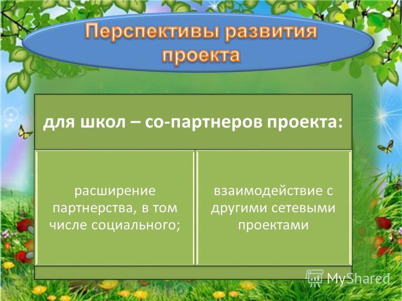 для школ – со-партнеров проекта: расширение партнерства, в том числе социального; взаимодействие с другими сетевыми проектами 11