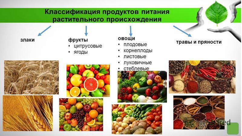 Классификация продуктов питания растительного происхождения злаки фрукты цитрусовые ягоды овощи плодовые корнеплоды листовые луковичные стеблевые травы и пряности