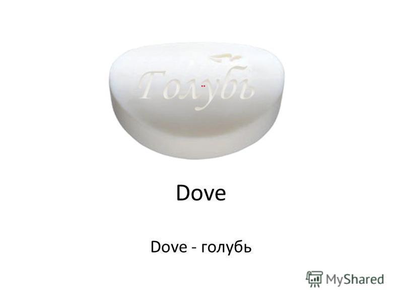 Dove Dove - голубь