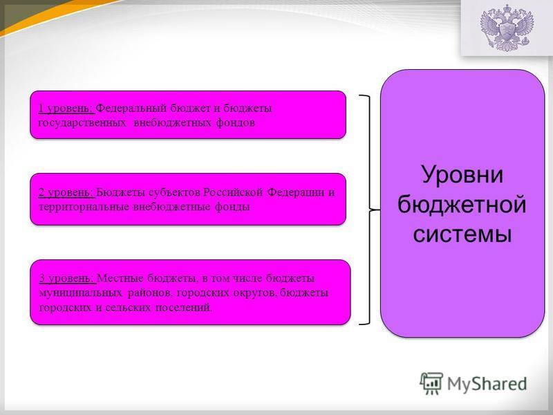 Уровни бюджетной системы 1 уровень: Федеральный бюджет и бюджеты государственных внебюджетных фондов 2 уровень: Бюджеты субъектов Российской Федерации и территориальные внебюджетные фонды 3 уровень: Местные бюджеты, в том числе бюджеты муниципальных