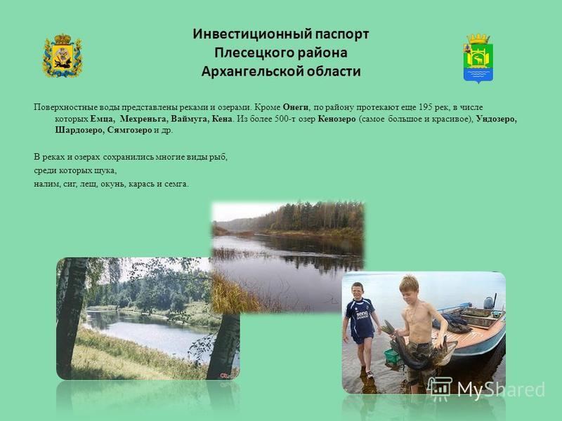 Инвестиционный паспорт Плесецкого района Архангельской области Поверхностные воды представлены реками и озерами. Кроме Онеги, по району протекают еще 195 рек, в числе которых Емца, Мехреньга, Ваймуга, Кена. Из более 500-т озер Кенозеро (самое большое