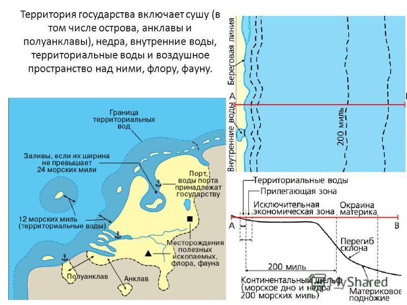 Территория государства включает сушу (в том числе острова, анклавы и полуанклавы), недра, внутренние воды, территориальные воды и воздушное пространство над ними, флору, фауну.