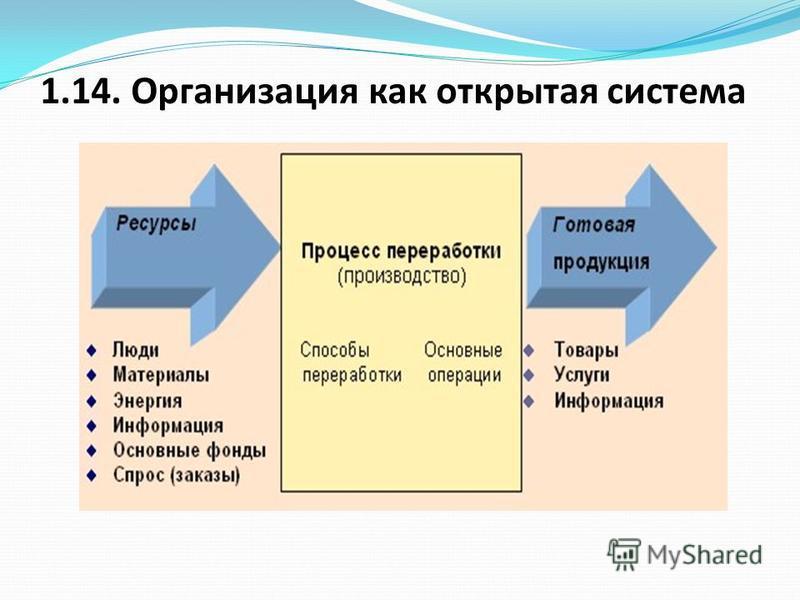1.14. Организация как открытая система