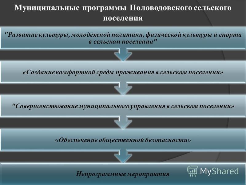Муниципальные программы Половодовского сельского поселения Непрограммные мероприятия «Обеспечение общественной безопасности»