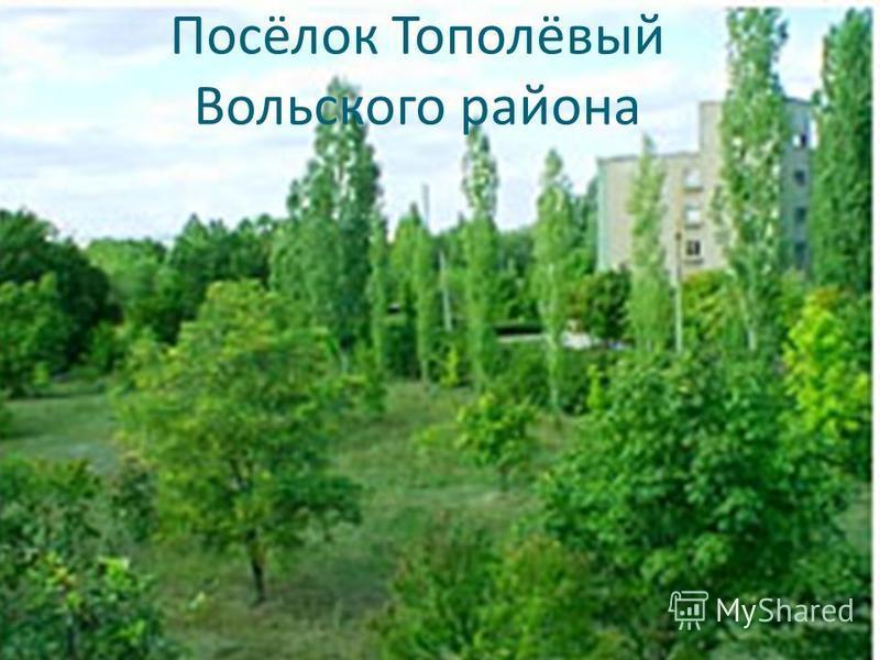 Посёлок Тополёвый Вольского района