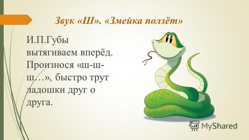 Звук «Ш». «Змейка ползёт» И.П.Губы вытягиваем вперёд. Произнося «ш-ш- ш…», быстро трут ладошки друг о друга.