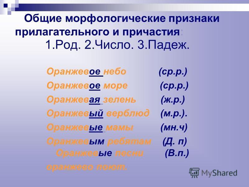 1. Род 2. Число 3. Падеж 4. Краткость Морфологические признаки прилагательного и причастия.