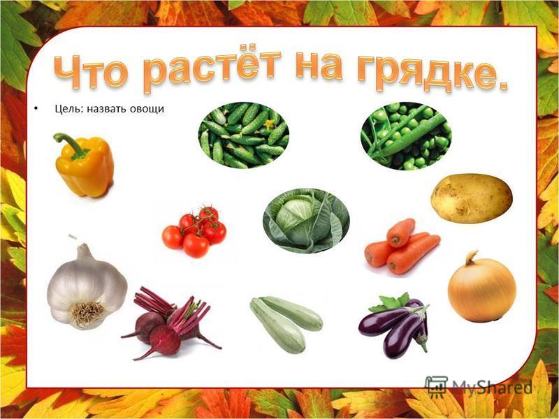 Цель: назвать овощи