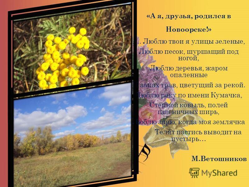 «А я, друзья, родился в Новоорске!» …. Люблю твои я улицы зеленые, Люблю песок, шуршащий под ногой, Люблю деревья, жаром опаленные И запах трав, цветущий за рекой. Люблю реку по имени Кумачка, Степной ковыль, полей пшеничных ширь, Люблю зарю, когда м