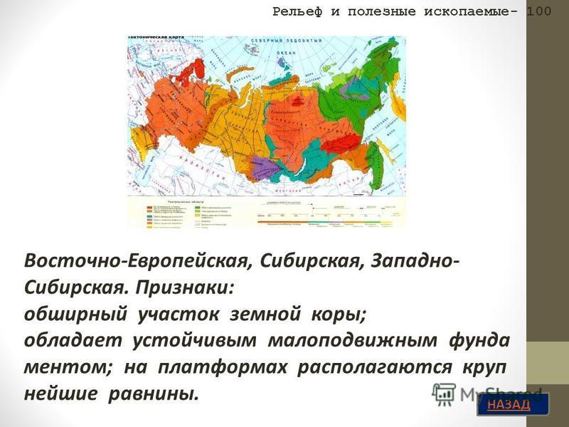 НАЗАД Восточно-Европейская, Сибирская, Западно- Сибирская. Признаки: обширный участок земной коры; обладает устойчивым малоподвижным фундаментом; на платформах располагаются крупнейшие равнины. Рельеф и полезные ископаемые- 100