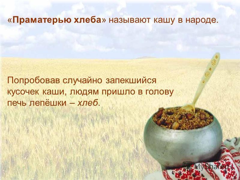 «Праматерью хлеба» называют кашу в народе. Попробовав случайно запекшийся кусочек каши, людям пришло в голову печь лепёшки – хлеб.