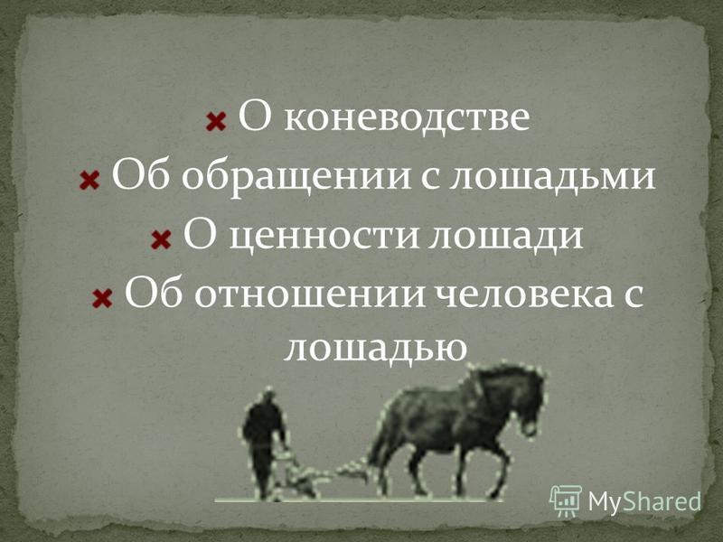 О коневодстве Об обращении с лошадьми О ценности лошади Об отношении человека с лошадью