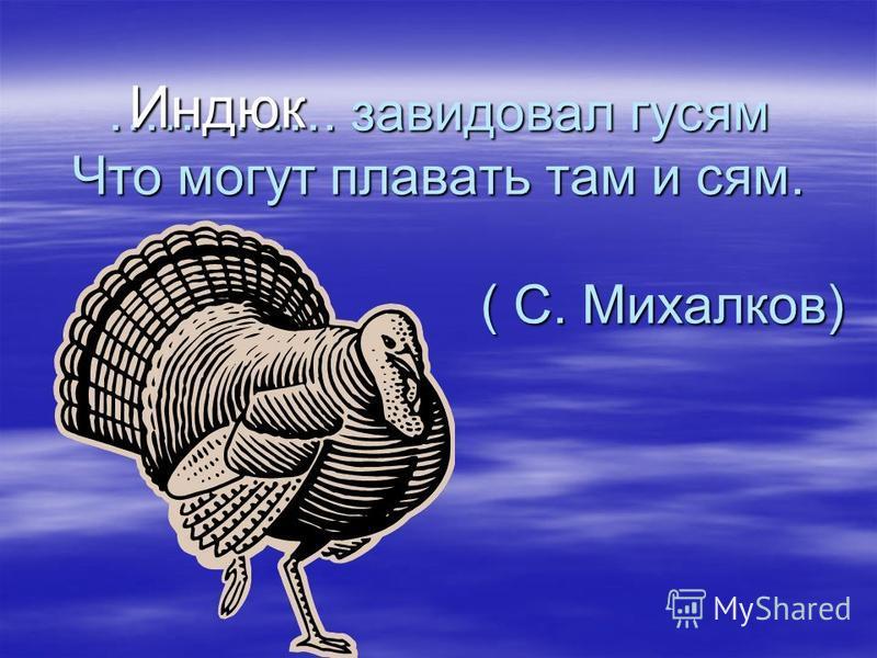 …………. завидовал гусям Что могут плавать там и сям. ( С. Михалков) Индюк