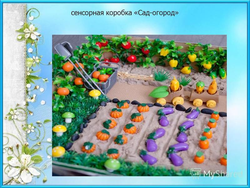 сенсорная коробка «Сад-огород»