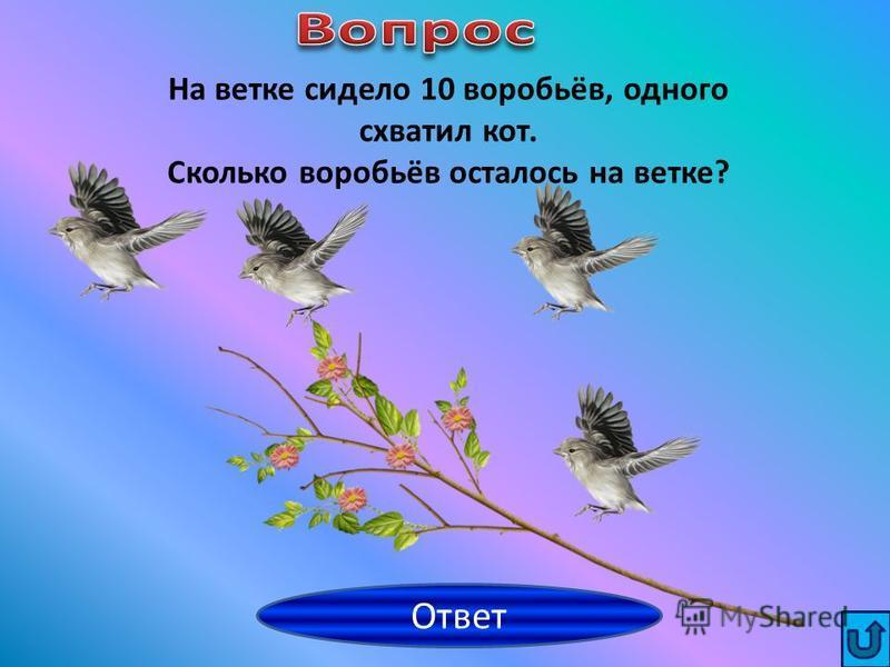 Дима Саша любит яблоки и груши, а Дима – клубнику и малину. Кто из ребят любит ягоды? Ответ